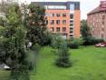 Prodej bytu 2+1 Olomouc - Remešova - Rezervace