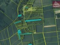 pozemek - les Dolany a Suchonice